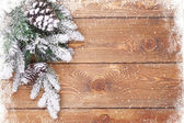 Wood texture with snow and firtree — Stock Photo