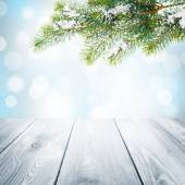 Christmas background with snow fir tree — Stock Photo