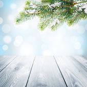 Christmas background with snow fir tree — Photo