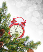 Clock and snow fir tree — Stock Photo