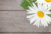 первоклассные цветы ромашки на деревянном столе — Стоковое фото