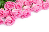 Valentines day   pink roses — Stock Photo