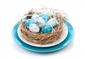 Ninho de ovos de Páscoa na placa — Fotografia Stock