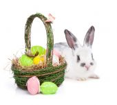 Easter eggs basket and rabbit — Stockfoto