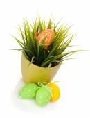 Huevos de Pascua con la hierba — Foto de Stock