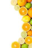 Citrusvruchten als achtergrond — Stockfoto