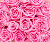 Valentines day background with  roses — Stock Photo