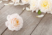 Fresh rose flowers on wooden background — Stock Photo