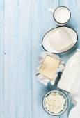 Sour cream, milk, cheese and yogurt — Stock Photo