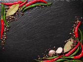 Chili pepper, peppercorn, garlic and bay leaves — Stock Photo