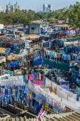 World's largest outdoor laundry, India — Stock Photo