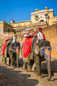 Elephant riders in the Amber Fort — Stock Photo