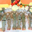 Fresh lobsters on ice — Stock Photo #70807521