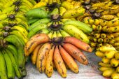Bunches of ripe bananas — 图库照片