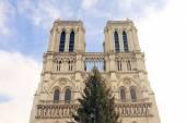 Notre Dame de Pari — Stockfoto