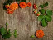 Roses with leaves frame  on wooden background. — Stock Photo