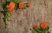 Roses with leaves frame on wooden background — 图库照片