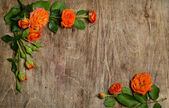 Roses with leaves frame on wooden background — Stock fotografie
