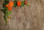 Corner from roses with leaves on wooden background. — Stock Photo