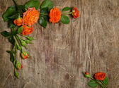 Roses with leaves frame  on wooden background — Stock Photo