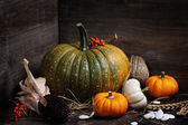 Autumn composition — Stock Photo