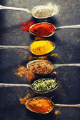 Colorful spices in metal spoons  — ストック写真