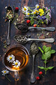 Black, green and herbal tea — Foto de Stock