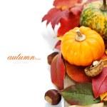 Autumn composition — Stock Photo #56056589