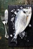 Food background with Fish and Wine — Foto de Stock