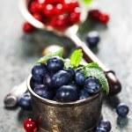 Berry — Stock Photo #59281727