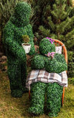 Family of live bushes. Outdoor fairy tale style photo. — Stock Photo