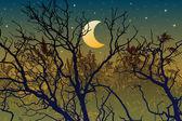 Forest illustration for halloween — Stock Vector