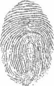Fingerprints — Stock Vector
