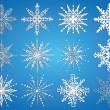 Set of vector snowflakes  — Stock Vector #61379915