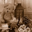 Fall flowers and teddy bear — Stock Photo #55555313