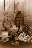 Fall flowers and teddy bear — Stock Photo