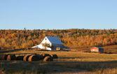 Fall farmland — Stock Photo