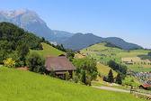 Scenic Alps pastures, mountains — Fotografia Stock