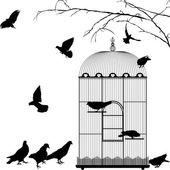Birdcage and birds — 图库矢量图片
