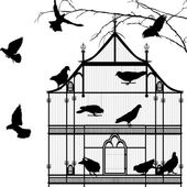 Birds and birdcage graphic — ストックベクタ