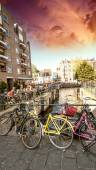 Amsterdam. Colorful yellow and pink Bicycles — Stock Photo