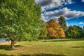 Beautiful Hyde Park — Stock Photo