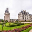 Garden and Castle of Chenonceau. — Stock Photo #52404097
