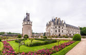 Garden and Castle of Chenonceau. — Foto Stock
