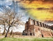 San Galgano Abbey Cistercian, Siena — Stock Photo