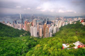 Modern city surrounded by forest and sea — Stock Photo