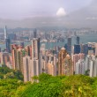 Panoramic view of Hong Kong from Victoria Peak — Stock Photo #52876667