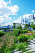 High Line Park in NYC — Stock Photo