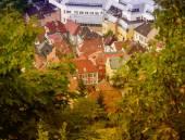 Scandinavian homes between trees — Stock Photo