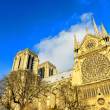 The Cathedral of Notre Dame in Paris — Stock Photo #53959741